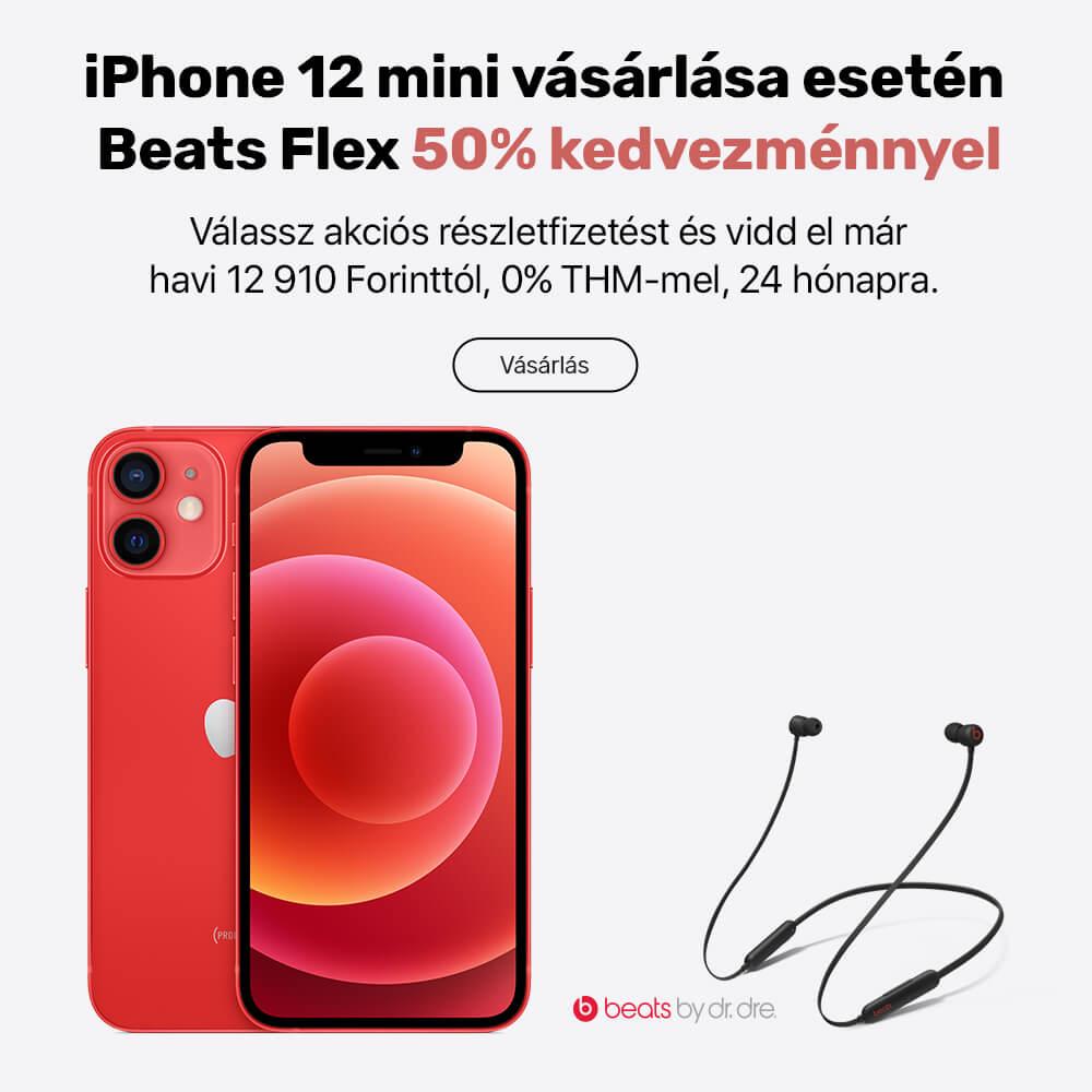 12 mini + Beats Flex